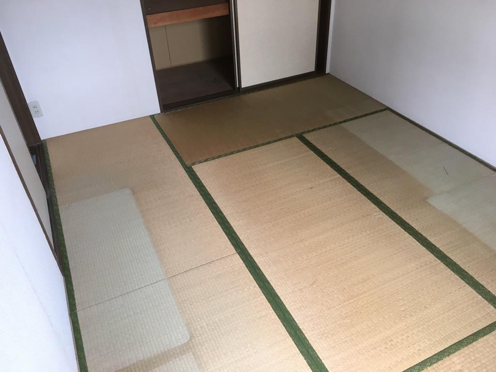 畳表替え 施工前