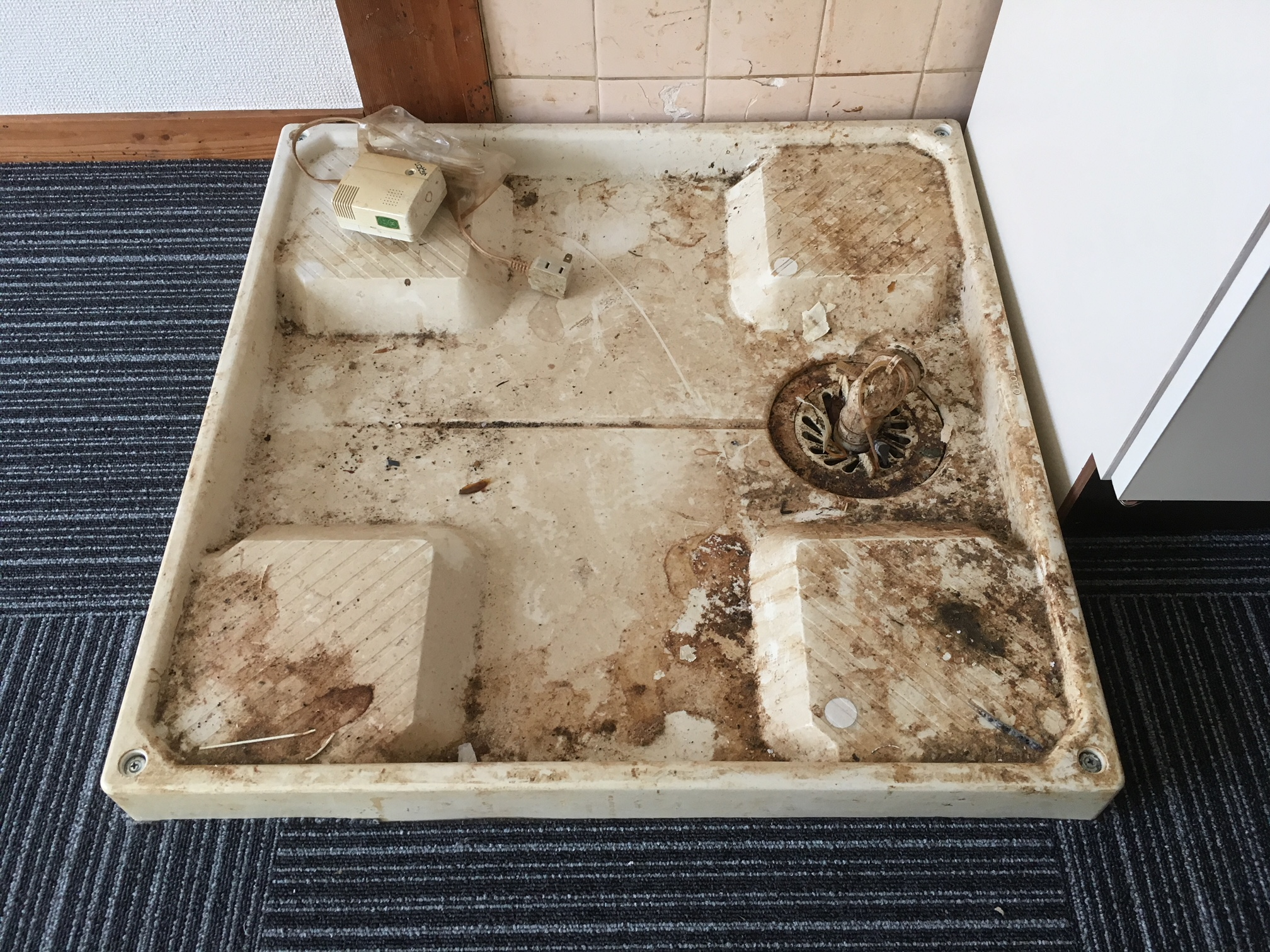 賃貸退居後空部屋清掃 洗濯パン 清掃前